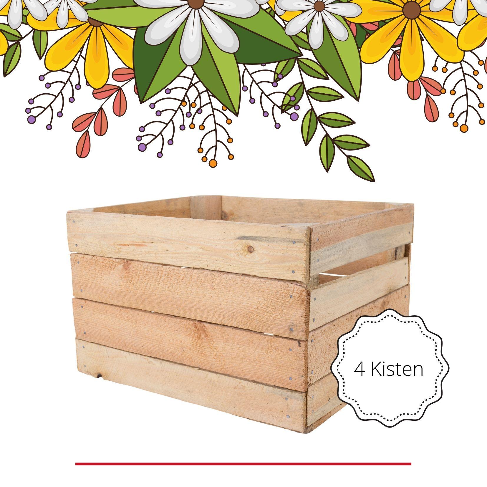 4x Alte helle Kisten I Ideal zum dekorieren rund ums Haus